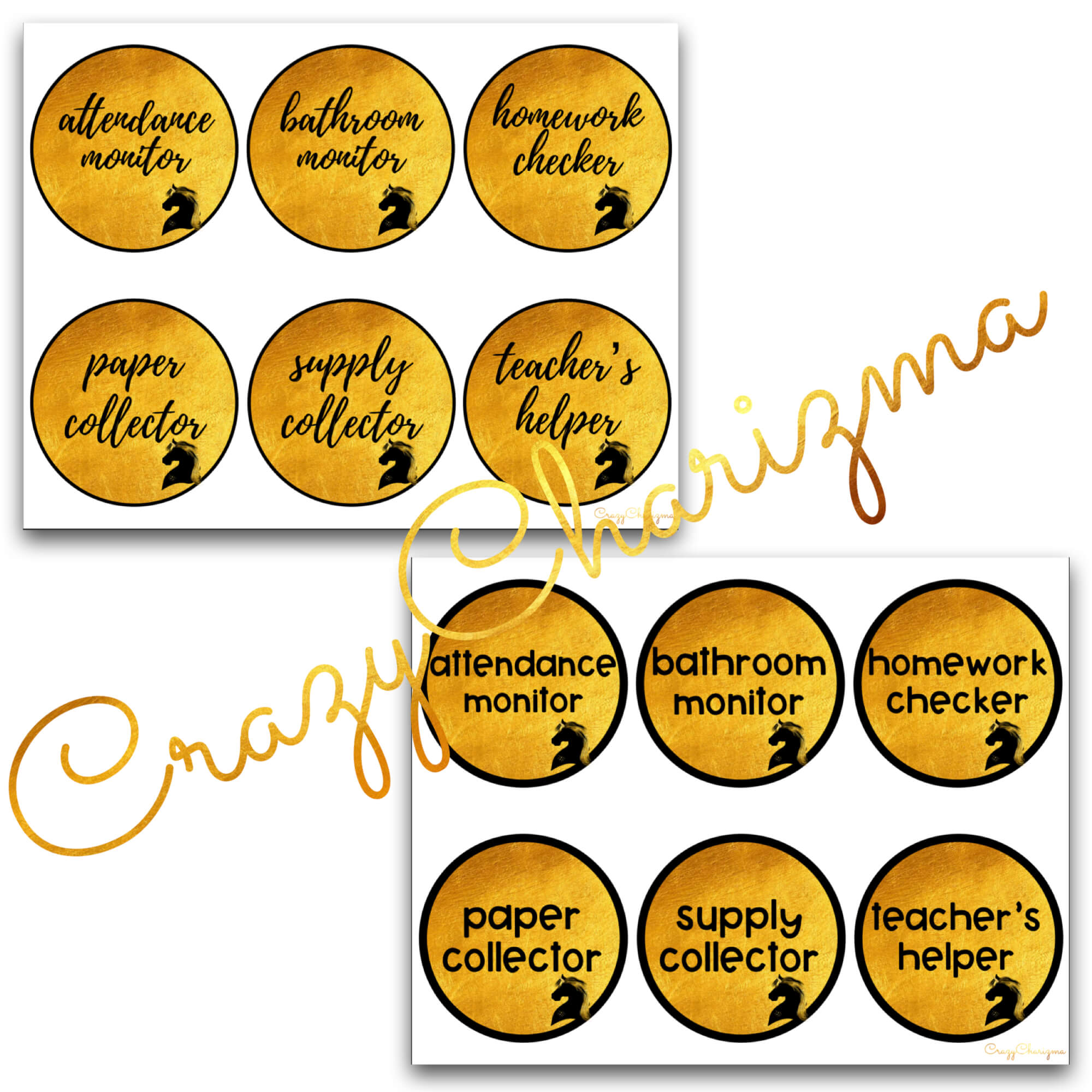 Looking for bright and clear EDITABLE classroom jobs labels? Spice your classroom with this visually appealing classroom decor!