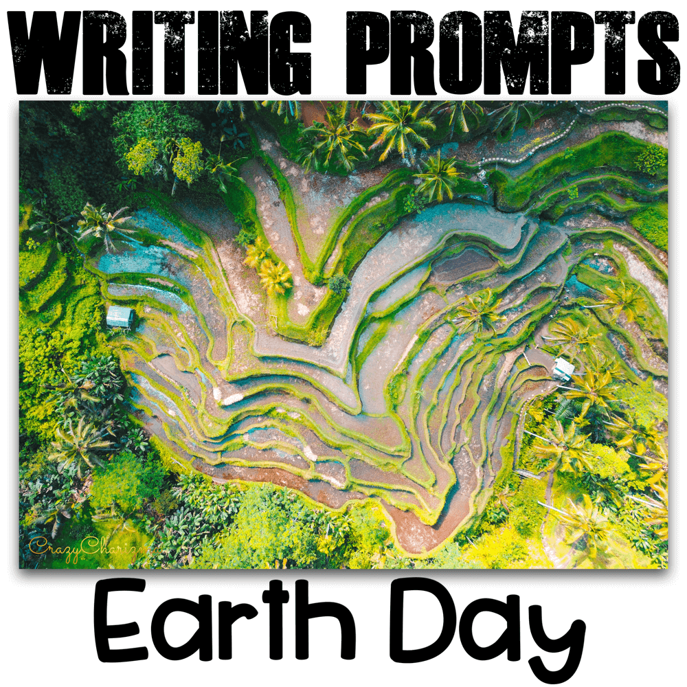 Celebrate Earth Day in your classroom and provide students with writing tasks and ideas. The packet contains narrative, informational and opinion writing prompts for teens. The prompts can be used as Writing Centers, as well as with adults during ESL lessons.