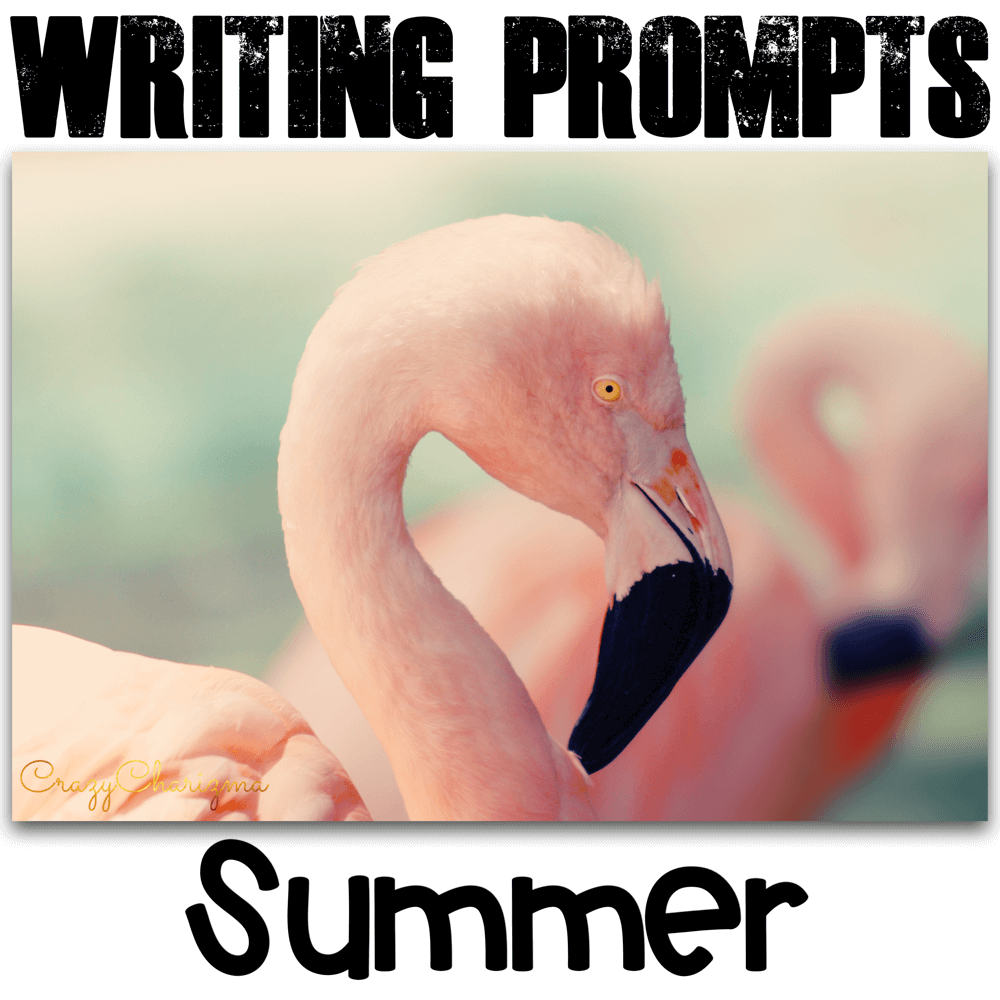 Celebrate SUMMER in your classroom and engage students with writing. These writing prompts are easy to prepare and you'll be able to use them every year! The task cards can be used as Writing Centers in middle and high school. Go ahead and use them with adults during ESL lessons as well.