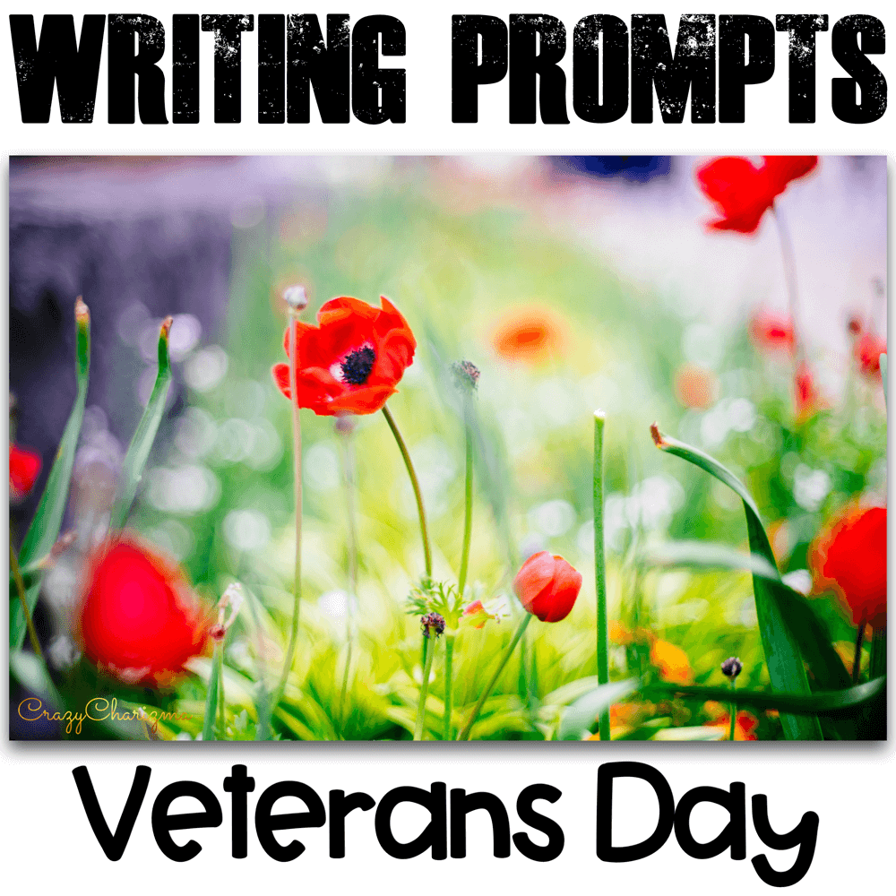 Celebrate Veteran's Day in your classroom and provide students with writing tasks and ideas. The packet contains narrative, informational and opinion writing prompts for teens. The prompts can be used as Writing Centers, as well as with adults during ESL lessons.