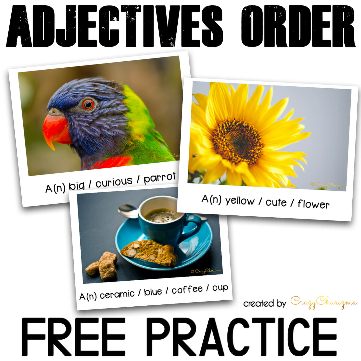 Free Ordering Adjectives Practice